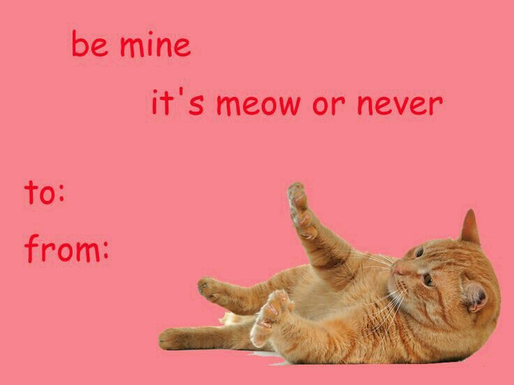 Valentines Day Card Memes 2018