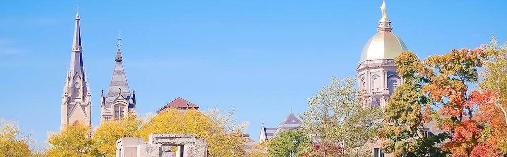 Notre Dame - Mogul