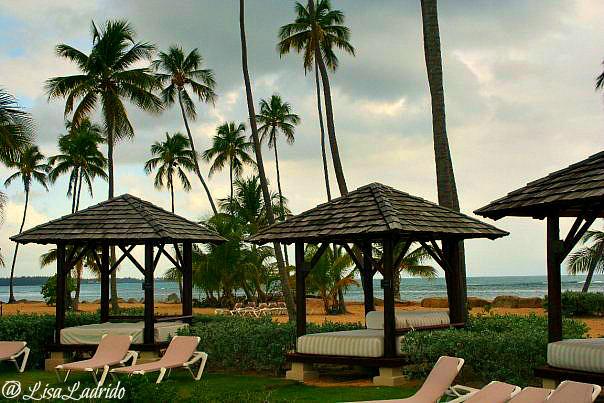 Where to Stay in Puerto Rico: Gran Melia Golf Resort # ...